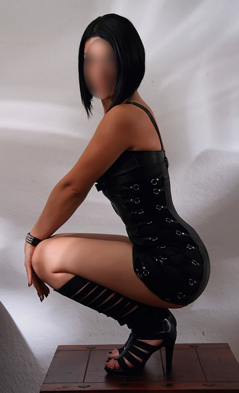 novum kassel escortservice in nrw